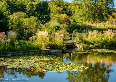 2016_08_29_Trailwalks_Holden Arboretum_0057