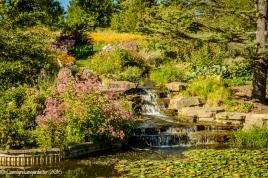 2016_08_29_Trailwalks_Holden Arboretum_0059