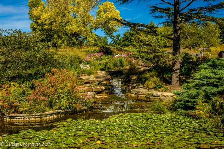 2016_09_16_trailwalk_holden-arboretum_0027-edit