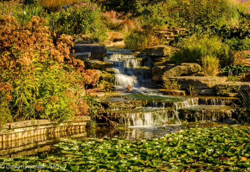 2016_09_22_places_holden-arboretum_0020