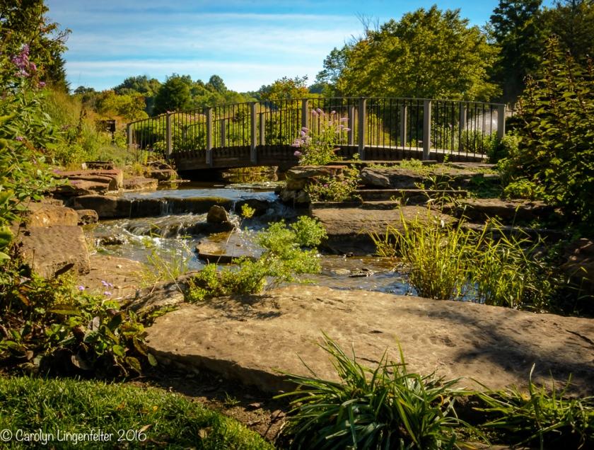 2016_09_22_places_holden-arboretum_0044