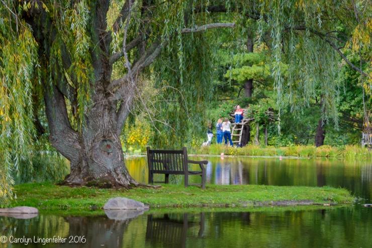 2016_10_03_holden-arboretum_033