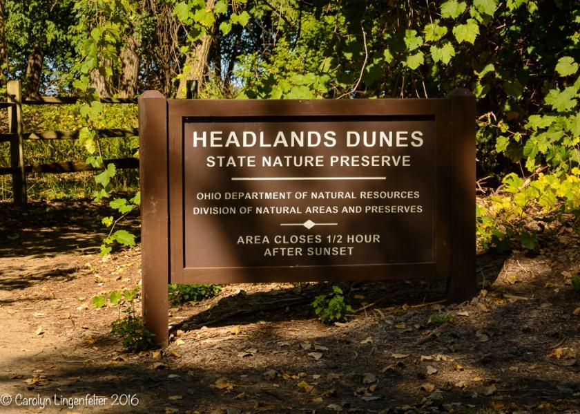 2016_10_07_headlands-_075