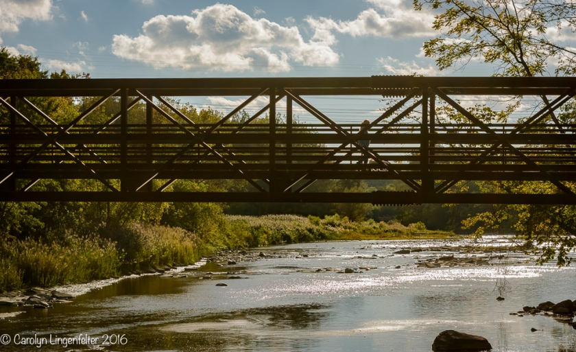 2016_10_08_places_chagrin-river-park_0011