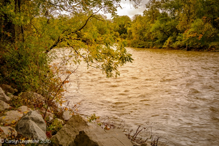 2016_10_21_places_chagrin-river-park_0009