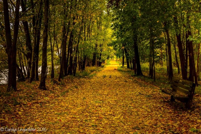 2016_10_21_places_chagrin-river-park_0030