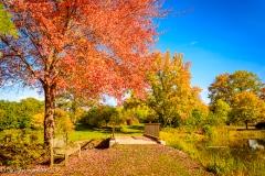 2016_10_28_places_holden-arboretum_0023