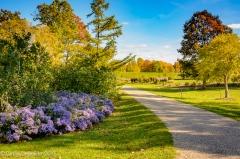 2016_10_28_places_holden-arboretum_0034