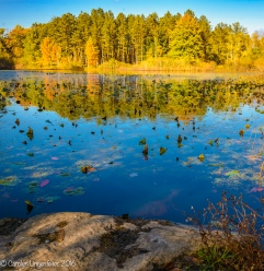 I sat on the ground to capture these reflections on Blueberry Pond.