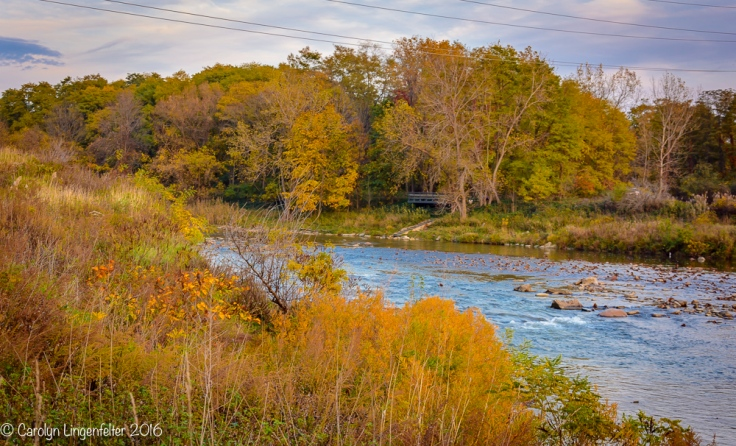 2016_11_02_places_chagrin-river-park_0063