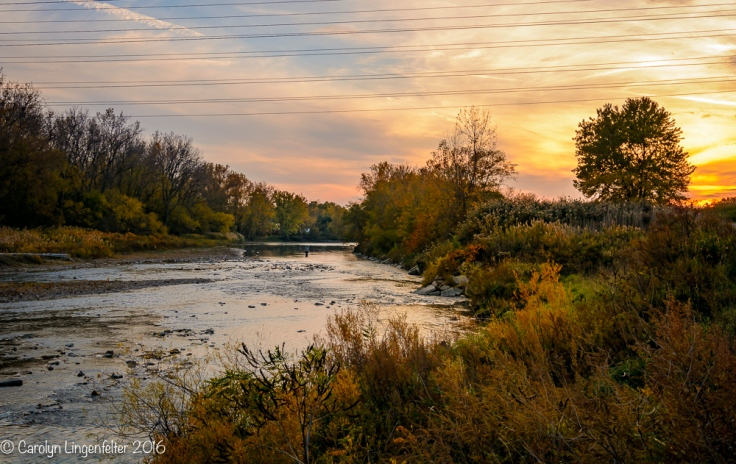 2016_11_02_places_chagrin-river-park_0064