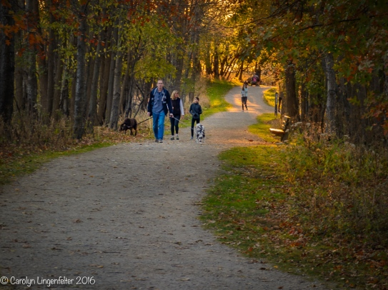 Walking the river trail