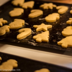 2016_11_26_family_baking-christmas-cookies_0026