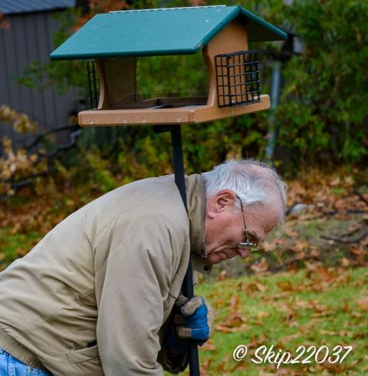 2016_11_26_places_back-yard-birding_0005