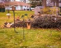 2016_12_05_backyard-buffet_taking-down-the-tree_0002-edit