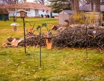 2016_12_05_backyard-buffet_taking-down-the-tree_0002-edit