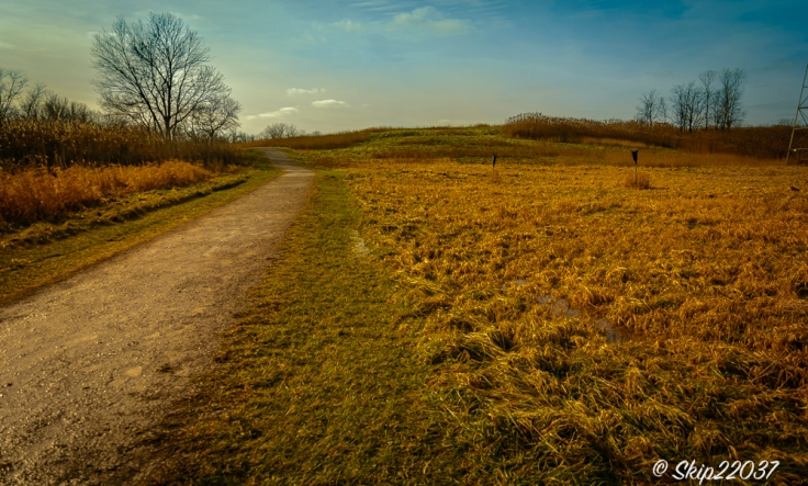 2017_01_13_places-chagrin-river-park_winter-trail-walk_0010