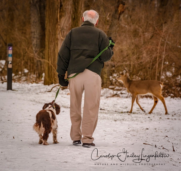 2017_02_16_places-chagrin-river-park_winter-trail-walk_0029