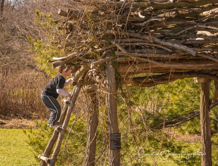 2017_02_18_holden-arboretum_winter-trail-walk_0001