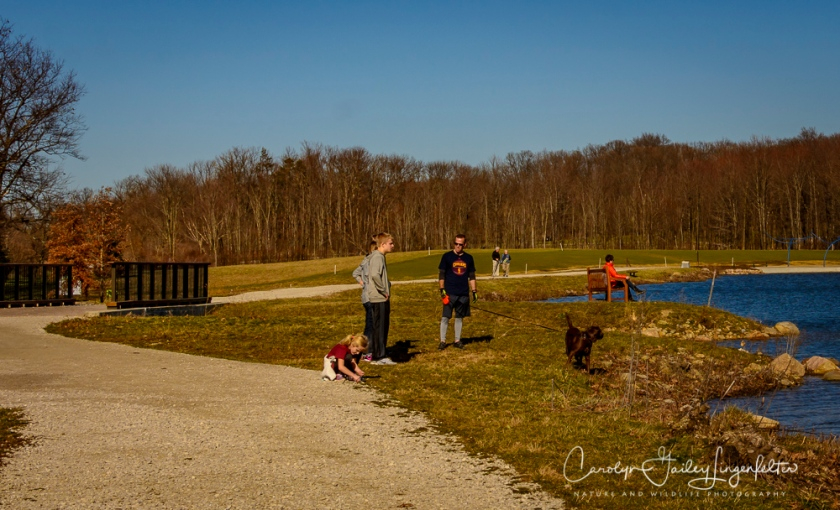 2017_02_18_holden-arboretum_winter-trail-walk_0024