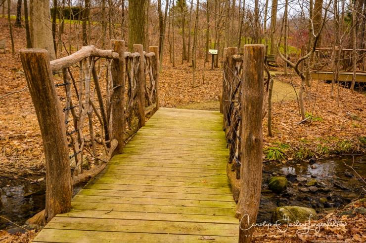 2017_02_21_holden-arboretum_winter-trail-walk_0009