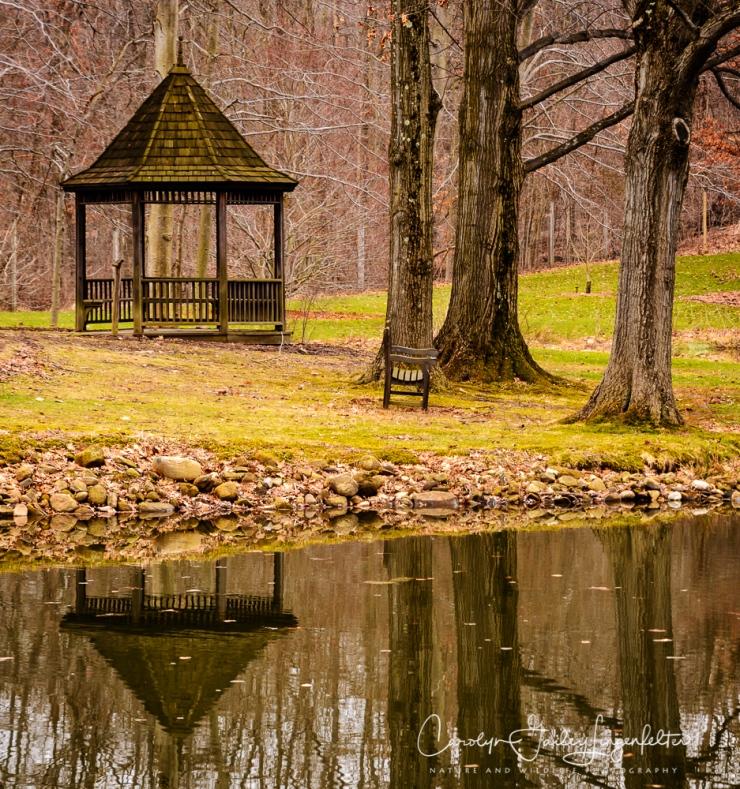 2017_02_21_holden-arboretum_winter-trail-walk_0092-edit