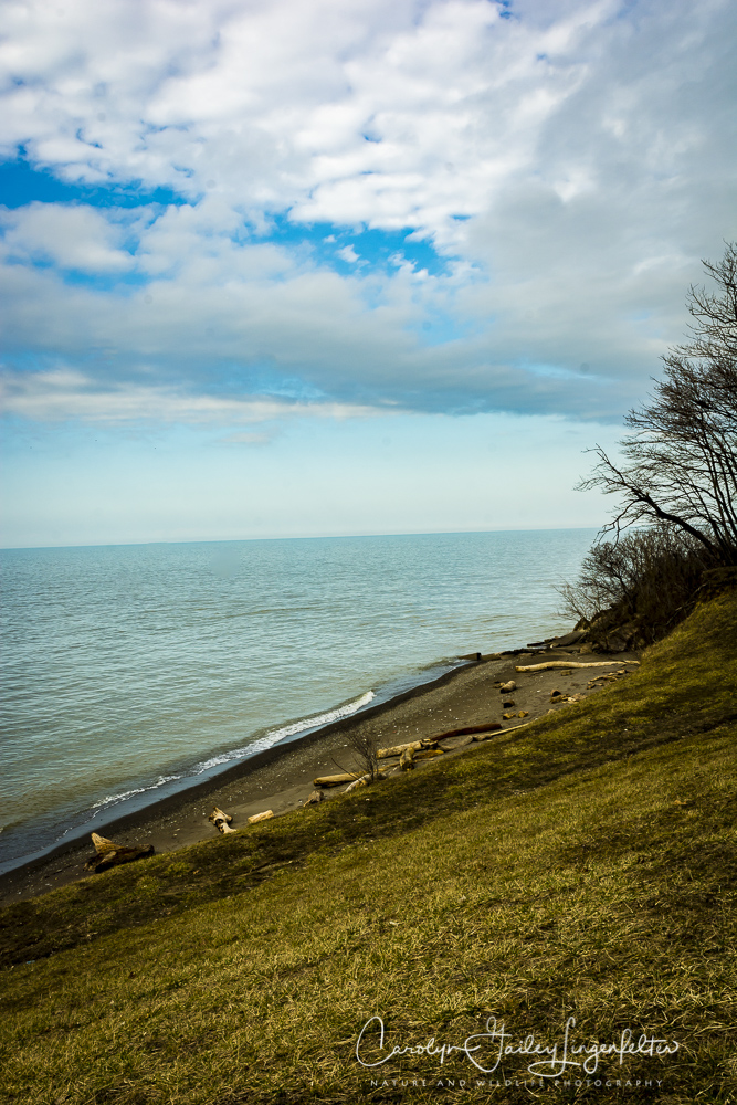2017_02_27_places_overlook-beach-park_0005