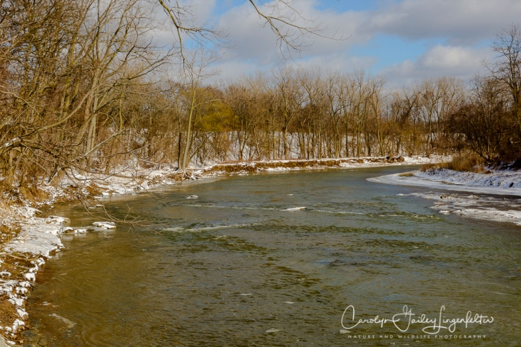 2017_03_15_Places_Chagrin River Park_0005