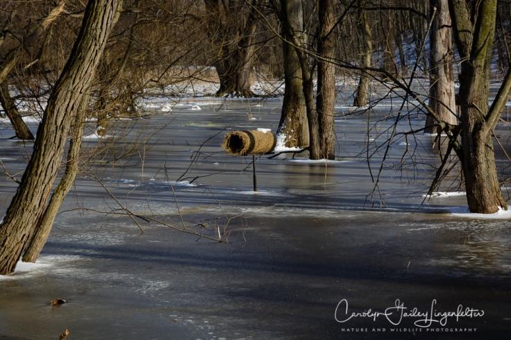 2017_03_15_Places_Chagrin River Park_0088