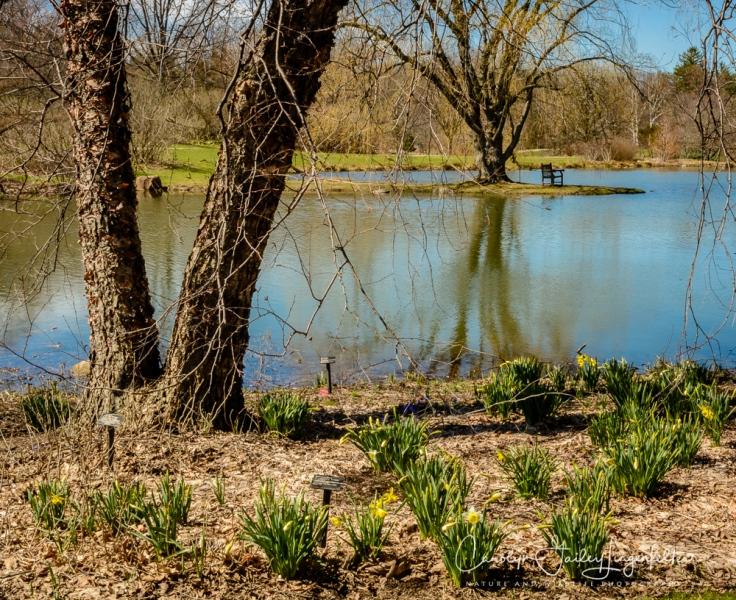 2017_03_29_Holden Arboretum_021