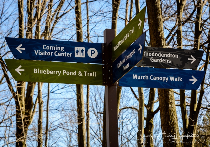 2017_03_29_Holden Arboretum_035