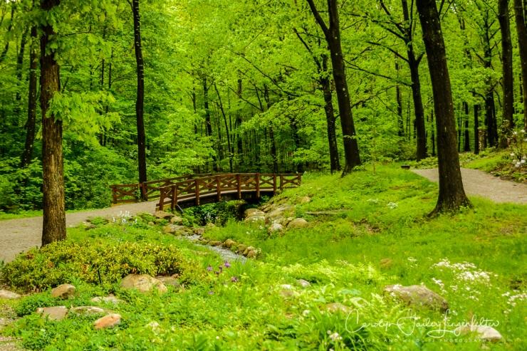 2017_05_26_Places_Holden Arboretum_0064