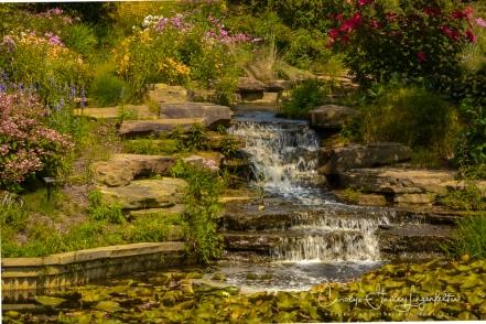 2017_08_25_Summer 2017_Holden Arboretum_0105