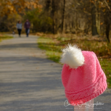 Someone lost their hat along the trail.
