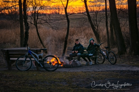 2018_01_28_Chagrin River Park_Winter night shoot_0018