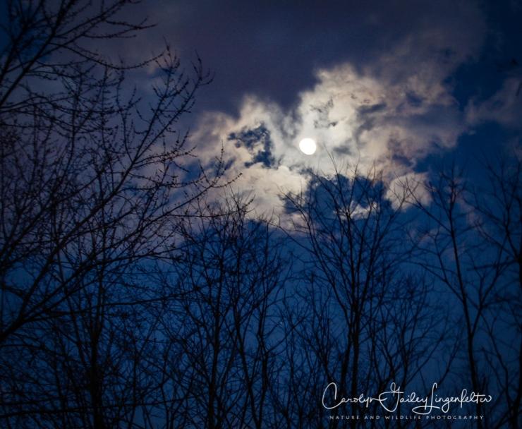 2018_01_28_Chagrin River Park_Winter night shoot_0063