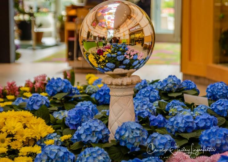 2017_04_21_Cleveland_Botanical Garden0028