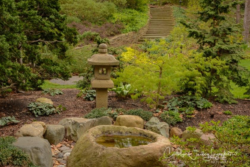 2017_04_21_Cleveland_Botanical Garden0056