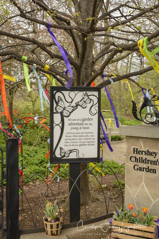 2017_04_21_Cleveland_Botanical Garden0080