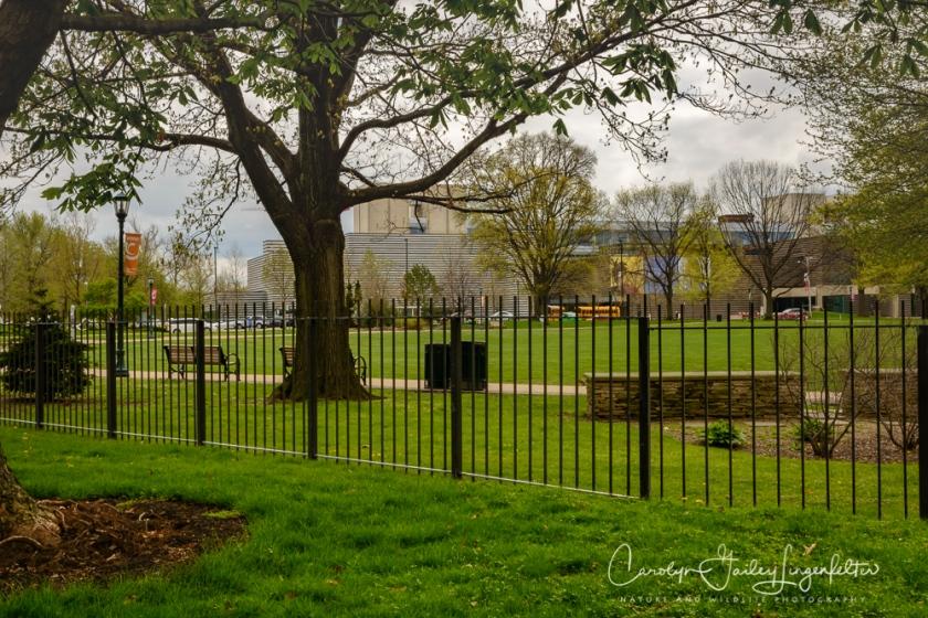 2017_04_21_Cleveland_Botanical Garden0089
