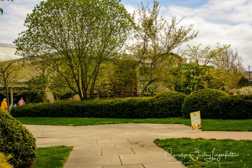 2017_04_21_Cleveland_Botanical Garden0096