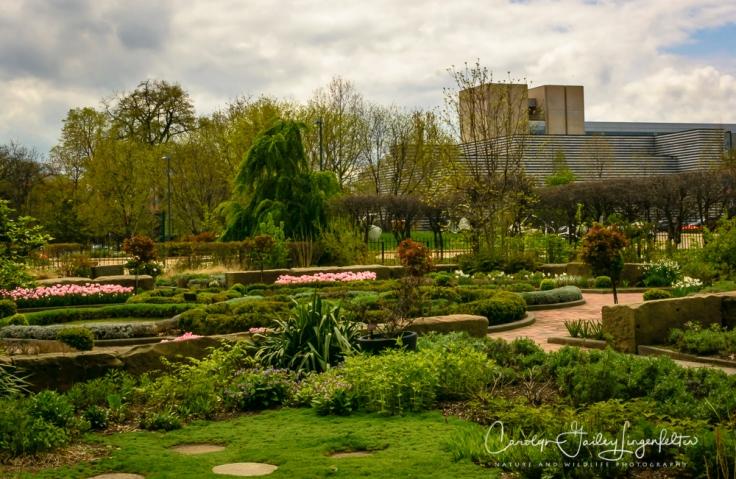 2017_04_21_Cleveland_Botanical Garden0101