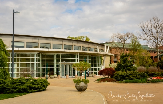 2017_04_21_Cleveland_Botanical Garden0109