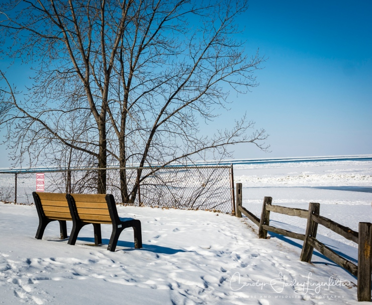2018_02_12_Winter 2018_Lake Erie in MOL_0006