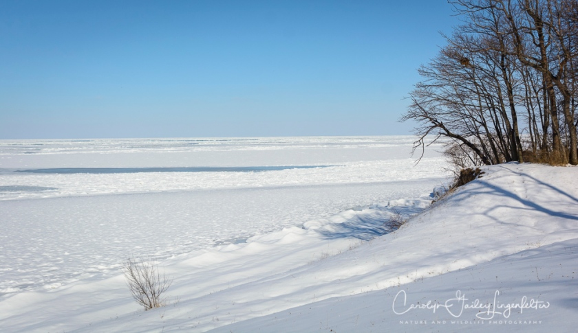 2018_02_12_Winter 2018_Lake Erie in MOL_0008