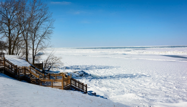 2018_02_12_Winter 2018_Lake Erie in MOL_0011
