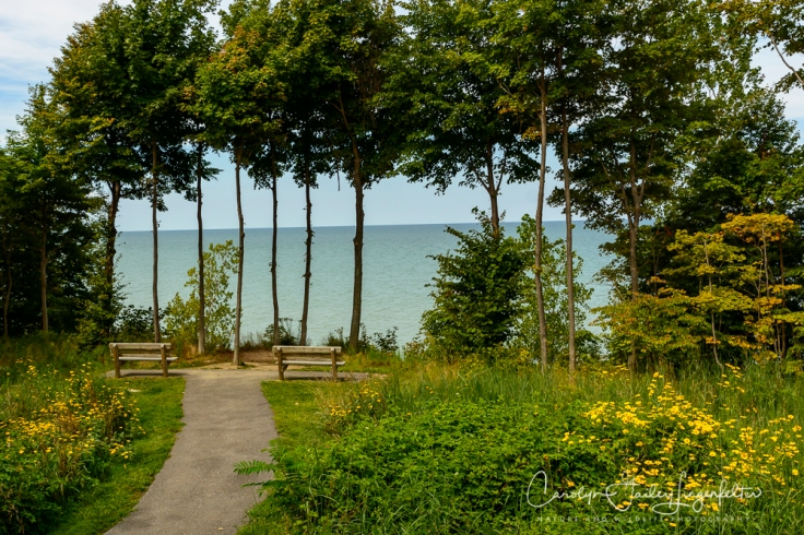 2018_08_31__Lake Erie Bluffs_0016