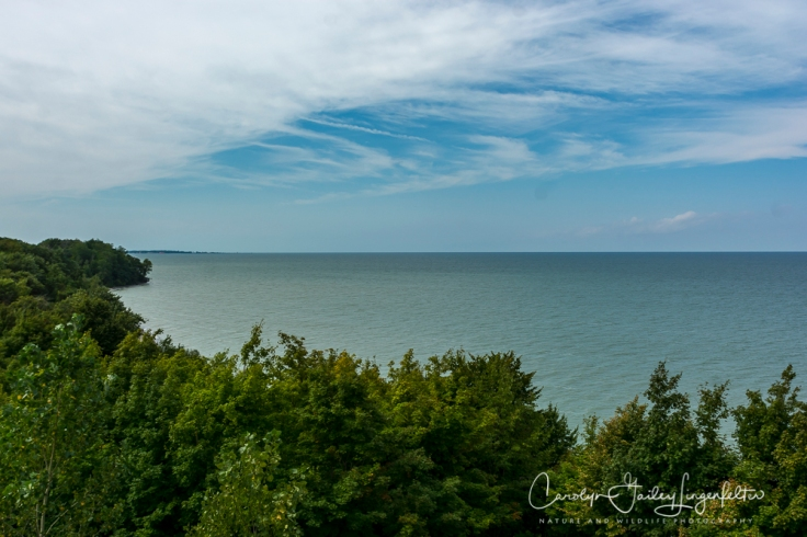 2018_08_31__Lake Erie Bluffs_0017