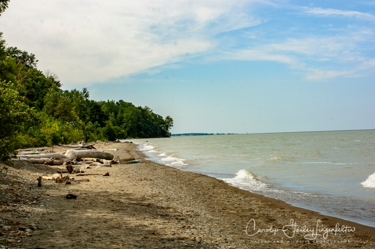 2018_08_31__Lake Erie Bluffs_0029