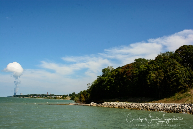 2018_08_31__Lake Erie Bluffs_0035